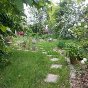 Luna - Der magische Garten